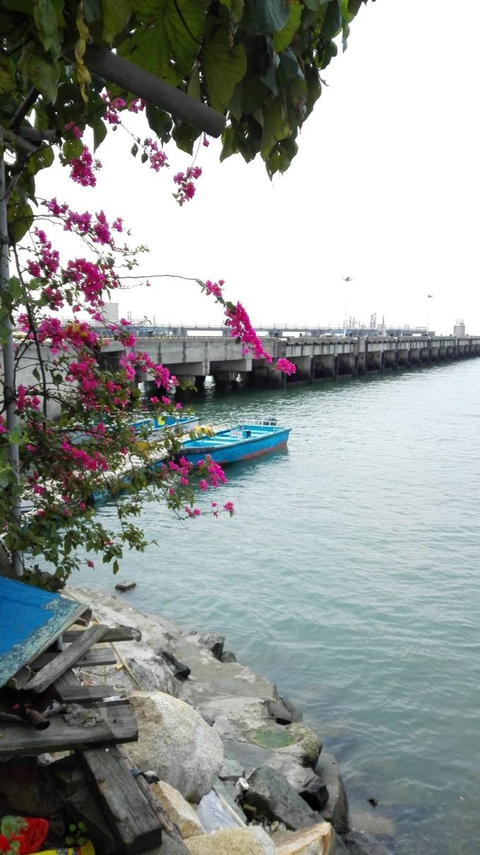 珠海最大的特点是海,很多人和我说,当去到情侣路,看到混沌的