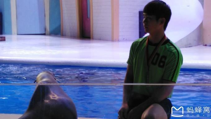 珠海长隆海洋王国企鹅酒店2天1晚自驾游