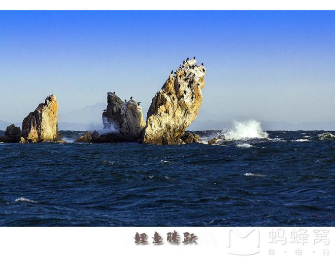 海王九岛还有日本侵略者1938年建造的国际灯塔